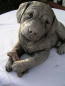 Preview: Labrador Welpe liegend - Labrador Pup laying