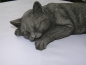 Preview: Katze liegend - Laying Cat